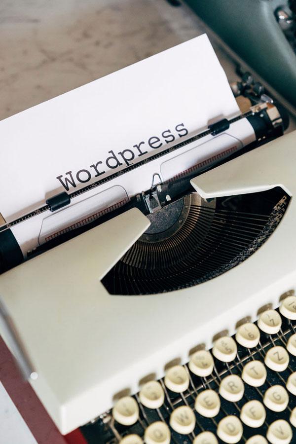 custom WordPress development service